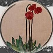 Newfoundland Pitcher Plant - Porthole Vignette Poster