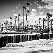 Newport Beach Dory Fishing Fleet Black And White Picture Poster by Paul Velgos