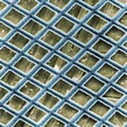 Nickel Electron Micrograph Grid Poster by David M. Phillips