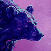 Night Bear Poster