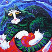 Night cat Poster