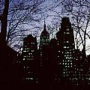 Night Lights Empire State Two Trees Poster