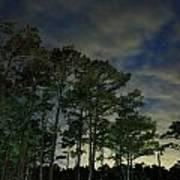 Night Pines Poster