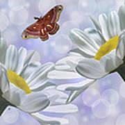 Nights In White Silk 2 Poster
