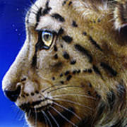 Nina The Snow Leopard Poster