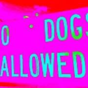 No Dogs Allowed Poster