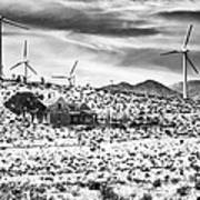 No Place Like Home Bw Palm Springs Desert Hot Springs Poster