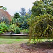 Norfolk Botanical Gardens Canal Poster