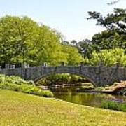 Norfolk Botanical Gardens In Color Poster