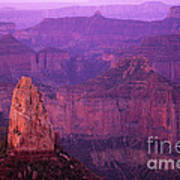 North Rim Grand Canyon Poster