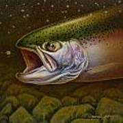 North Shore Steelhead Poster by Jon Q Wright