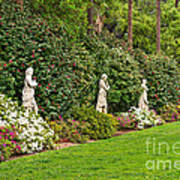 North Vista - Spring Flower Blooms At The North Vista Lawn Of The Huntington Library. Poster