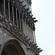 Notre Dame Gargoyle Row - Dijon Poster