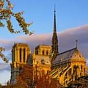 Notre Dame Sunrise Poster