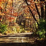 November Colors 5 Poster