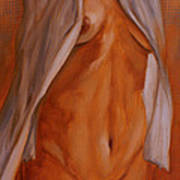Nude In Shirt IIi Poster by John Silver