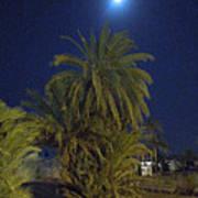 Nuweiba By Night Sinai Egypt Poster