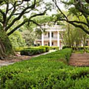 New Orleans Oak Alley Plantation Poster