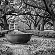 Oak Alley Plantation Landscape In Bw Poster