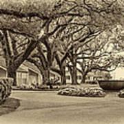 Oak Alley Slave Quarters Sepia Poster
