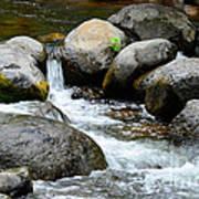 Oak Creek Water And Rocks Poster