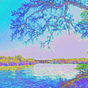 Oak On The Sacramento River - Pastel Poster