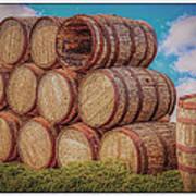 Oak Wine Barrels Poster