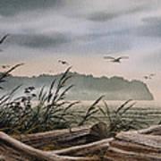 Ocean Shore Poster by James Williamson