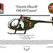 Oh-6a Electric Olive II Loach Poster