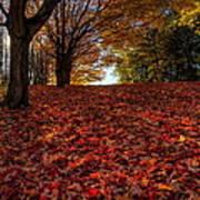 Ohio Fall Scenery Poster