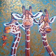 Oil Painting Of Three Gorgeous Giraffes Poster