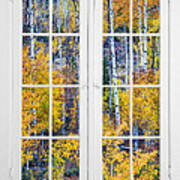 Old 16 Pane White Window Colorful Fall Aspen View  Poster