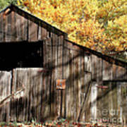 Old Barn In Autumn Poster