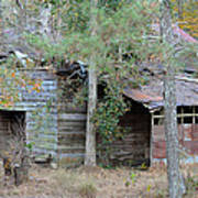 Old Barn With Side Shed Poster
