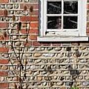 Old Cottage Window Sussex Uk Poster