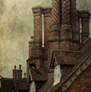 Old English House With Cat Poster