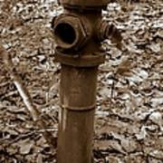 Old Fire Hydrant  Poster