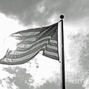 Old Glory Bw Poster