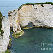 Old Harry Rocks On The Jurassic Coast In Dorset Poster