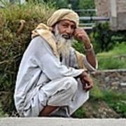Old Man Carrying Fodder Swat Valley Kpk Pakistan Poster