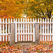 Old New England White Picket Fence Poster