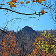 Old Rag Hiking Trail - 121212 Poster
