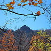 Old Rag Hiking Trail - 121213 Poster