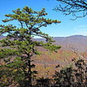 Old Rag Hiking Trail - 121221 Poster