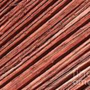 Old Red Wooden Wall In Sunlight Poster