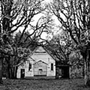 Old School House In The Woods Poster by Thomas J Rhodes