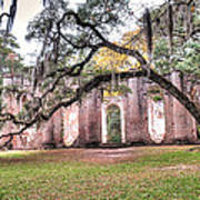 Old Sheldon Church - Bending Oak Poster