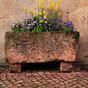 Old Stone Trough And Flowers In Alsace France Poster by Greg Matchick