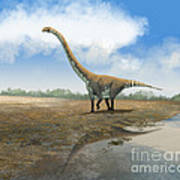 Omeisaurus Tianfuensis, An Euhelopus Poster by Roman Garcia Mora