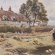 On The Common Hambledon Surrey Poster